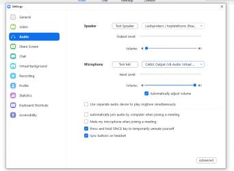 Screenshot zoom settings met audio uit OBS